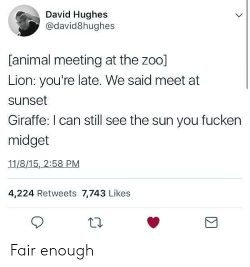 Animal, Giraffe, and Lion: David Hughes  @david8hughes  [animal meeting at the zoo]  Lion: you're late. We said meet at  sunset  Giraffe: I can still see the sun you fucken  midget  11/8/15, 2:58 PM  4,224 Retweets 7,743 Likes Fair enough
