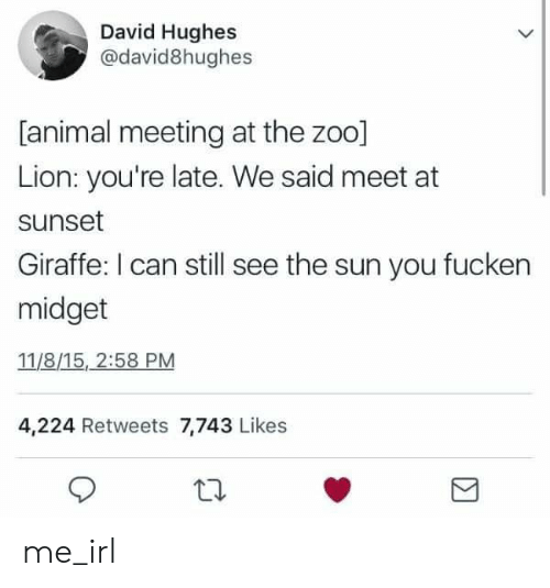 Animal, Giraffe, and Lion: David Hughes  @david8hughes  [animal meeting at the zoo]  Lion: you're late. We said meet at  sunset  Giraffe: I can still see the sun you fucken  midget  11/8/15, 2:58 PM  4,224 Retweets 7,743 Likes me_irl
