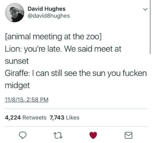 Animal, Giraffe, and Lion: David Hughes  @david8hughes  [animal meeting at the zoo]  Lion: you're late. We said meet at  sunset  Giraffe: I can still see the sun you fucken  midget  11/8/15, 2:58 PM  4,224 Retweets 7,743 Likes