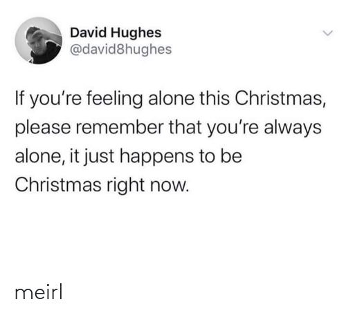 It Just: David Hughes  @david8hughes  If you're feeling alone this Christmas,  please remember that you're always  alone, it just happens to be  Christmas right now. meirl