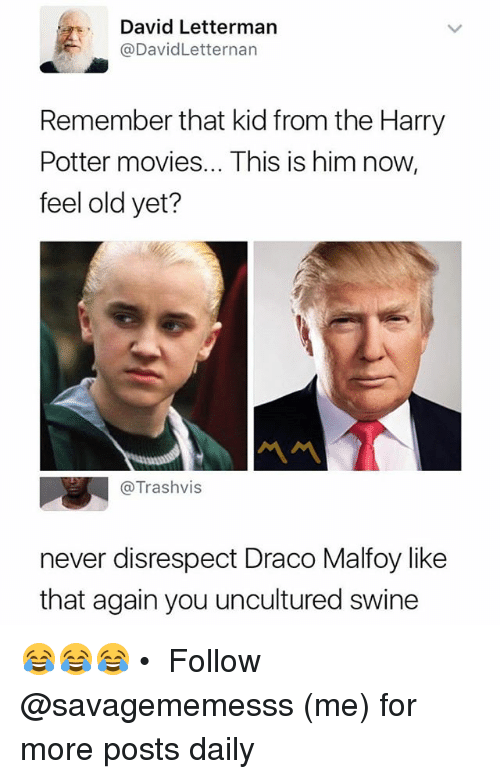 Harry Potter, Memes, and Movies: David Letterman  @DavidLetternan  Remember that kKid from the Harry  Potter movies... This is him now,  feel old yet?  @Trashvis  never disrespect Draco Malfoy like  that again you uncultured swine 😂😂😂 • ➫➫ Follow @savagememesss (me) for more posts daily