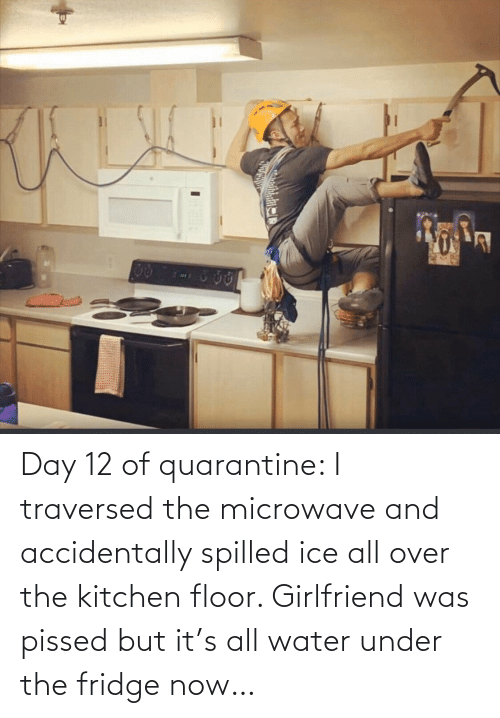 ice: Day 12 of quarantine: I traversed the microwave and accidentally spilled ice all over the kitchen floor. Girlfriend was pissed but it's all water under the fridge now…