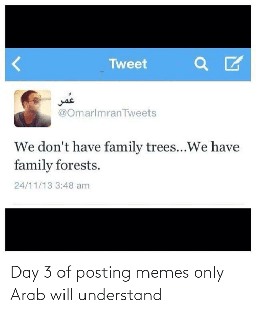 Arab: Day 3 of posting memes only Arab will understand