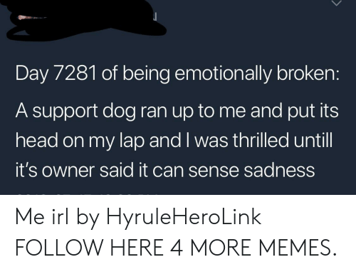 Dank, Head, and Memes: Day 7281 of being emotionally broken:  A support dog ran up to me and put its  head on my lap and I was thrilled until  it's owner said it can sense sadness Me irl by HyruleHeroLink FOLLOW HERE 4 MORE MEMES.