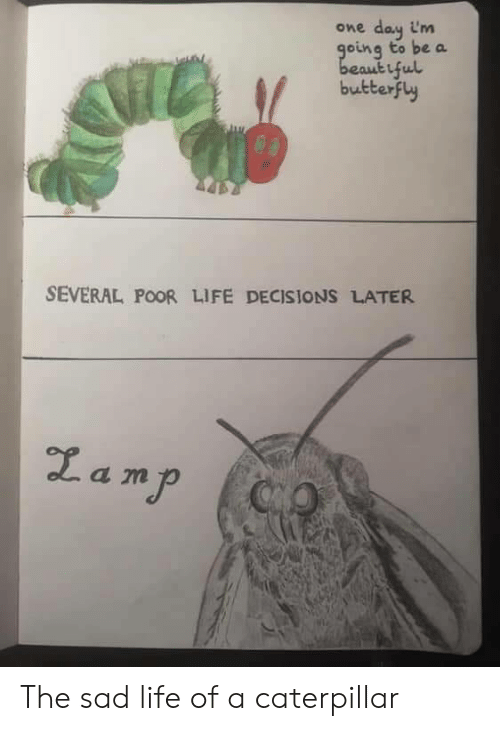 caterpillar: day im  going to be a  beautiful  butterfly  One  SEVERAL POOR LIFE DECISIONS LATER  Zamp  CO The sad life of a caterpillar