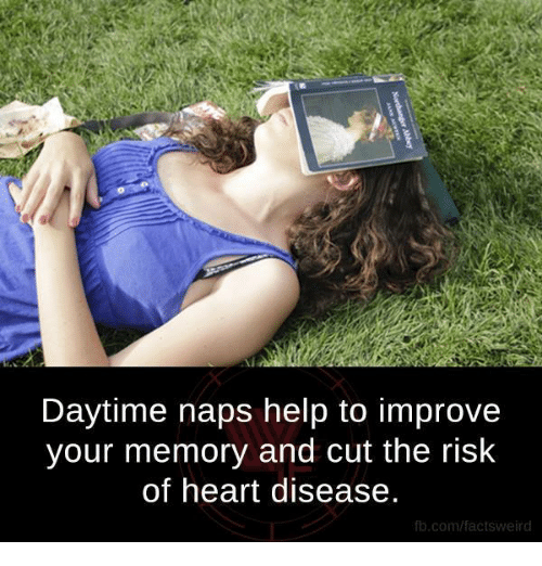 heart disease: Daytime naps help to improve  your memory and cut the risk  of heart disease.  fb.com/factsweird