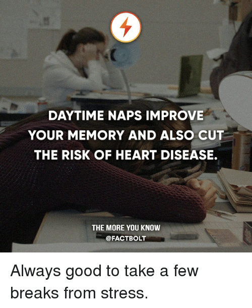 heart disease: DAYTIME NAPS IMPROVE  YOUR MEMORY AND ALSO CUT  THE RISK OF HEART DISEASE.  THE MORE YOU KNOW  @FACT BOLT Always good to take a few breaks from stress.