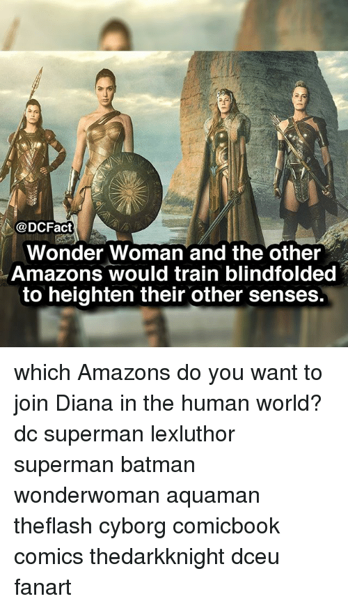 Batman, Memes, and Superman: @DCFact  Wonder Woman and the other  Amazons would train blindfolded  to heighten their other senses which Amazons do you want to join Diana in the human world? dc superman lexluthor superman batman wonderwoman aquaman theflash cyborg comicbook comics thedarkknight dceu fanart