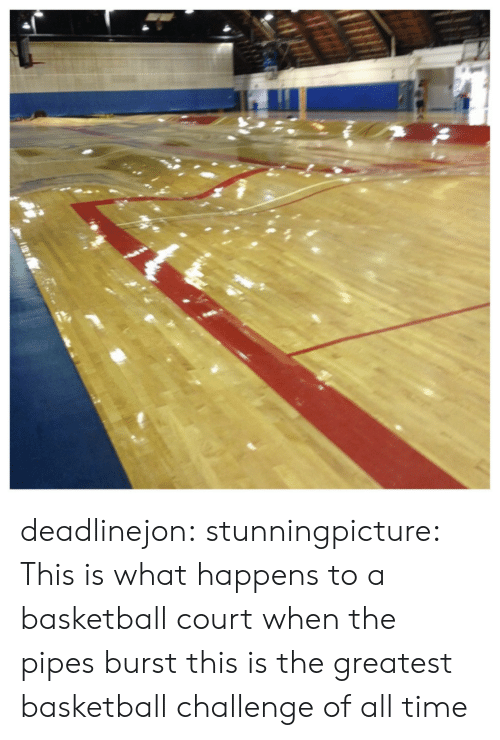 Basketball, Tumblr, and Blog: deadlinejon:  stunningpicture:  This is what happens to a basketball court when the pipes burst  this is the greatest basketball challenge of all time