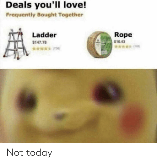 Ladder: Deals you'll love!  Frequently Bought Together  Rope  $10.43  Ladder  $147.78  *006) Not today