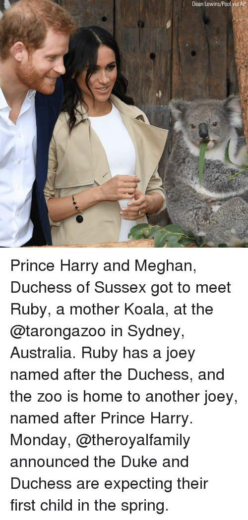 First Child: Dean Lewins/Pool via AP Prince Harry and Meghan, Duchess of Sussex got to meet Ruby, a mother Koala, at the @tarongazoo in Sydney, Australia. Ruby has a joey named after the Duchess, and the zoo is home to another joey, named after Prince Harry. Monday, @theroyalfamily announced the Duke and Duchess are expecting their first child in the spring.
