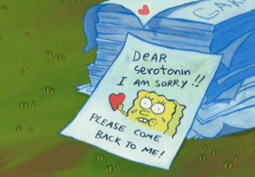 Come Back To Me: DEAR  !!  Mom  serotonin  I Am SORRY  PLEASE COME  BACK TO ME!