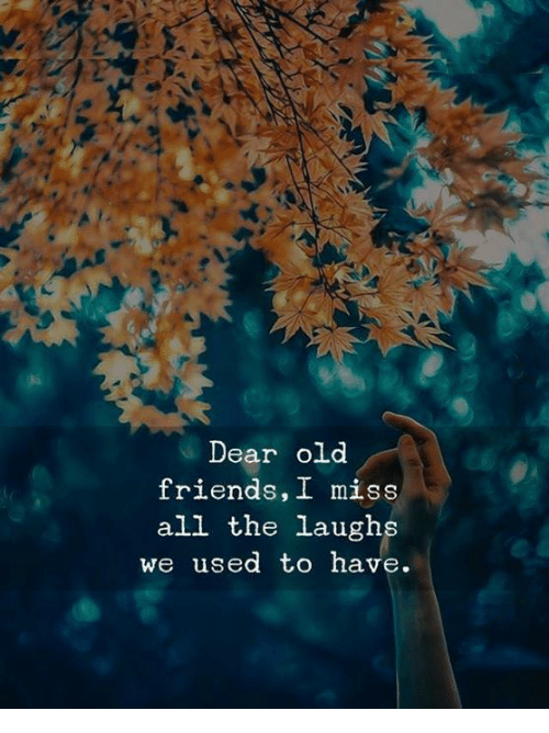 Friends, Old, and All The: Dear old  friends, I miss  all the laughs  we used to have