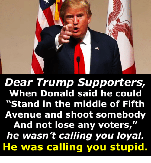"""Trump Supporters: Dear Trump Supporters,  When Donald said he could  """"Stand in the middle of Fifth  Avenue and shoot somebody  And not lose any voters,""""  he wasn't calling you loyal.  He was calling you stupid."""