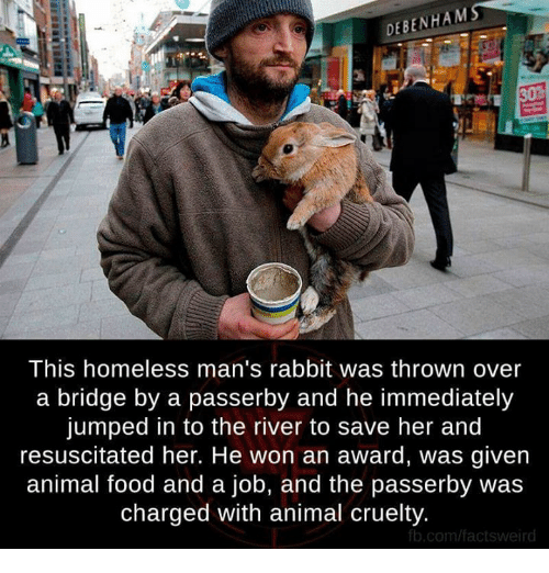 resuscitation: DEBENHAM  This homeless man's rabbit was thrown over  a bridge by a passerby and he immediately  jumped in to the river to save her and  resuscitated her. He won an award, was given  animal food and a job, and the passerby was  charged with animal cruelty.  fb.com/facts weird