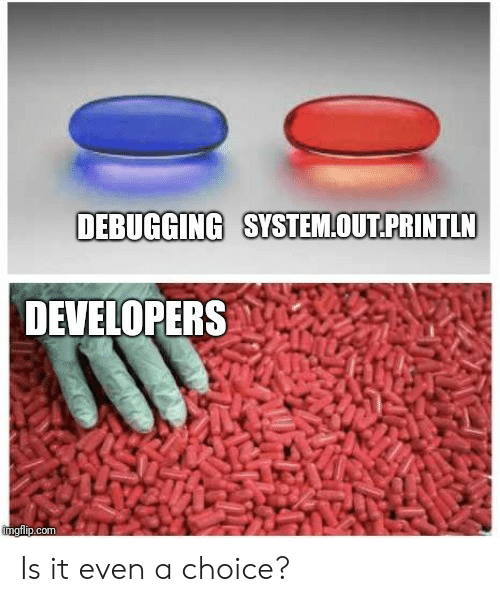 Com, System, and Out: DEBUGGING SYSTEM.OUT PRINTLN  DEVELOPERS  com Is it even a choice?
