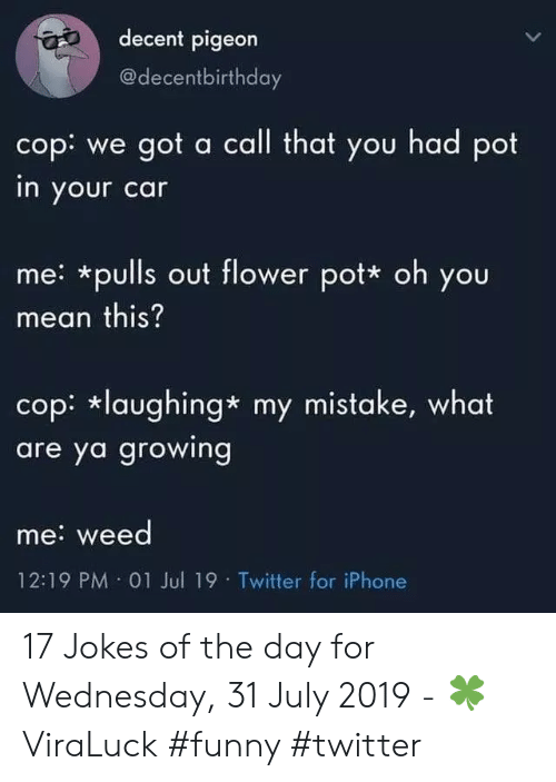 Jokes Of The Day: decent pigeon  @decentbirthday  cop: we got a call that you had pot  in your car  me: *pulls out flower pot* oh you  mean this?  cop: laughing* my mistake, what  are ya growing  me: weed  12:19 PM 01 Jul 19 Twitter for iPhone 17 Jokes of the day for Wednesday, 31 July 2019 - 🍀ViraLuck #funny #twitter