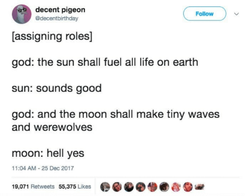 fuel: decent pigeon  @decentbirthday  Follow  [assigning roles]  god: the sun shall fuel all life on earth  sun: sounds good  god: and the moon shall make tiny waves  and werewolves  moon: hell yes  11:04 AM-25 Dec 2017  19,071 Retweets 55,375 Likes