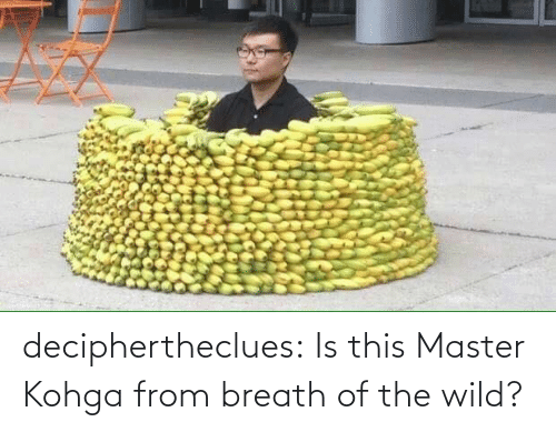 breath: deciphertheclues:  Is this Master Kohga from breath of the wild?