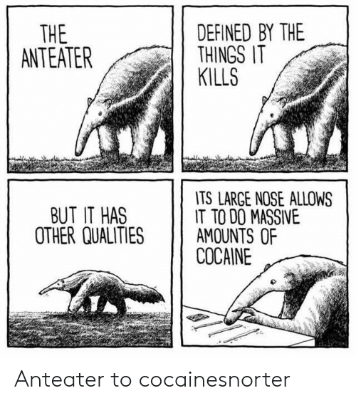 Cocaine, Anteater, and Defined: DEFINED BY THE  THINGS IT  KILLS  THE  ANTEATER  TS LARGE NOSE ALLOWS  IT TO DO MASSIVE  AMOUNTS OF  COCAINE  BUT IT HAS  OTHER QUALITIES Anteater to cocainesnorter