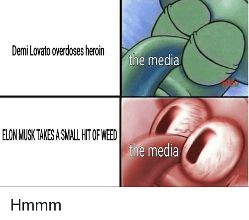 Demi Lovato, Heroin, and Weed: Demi Lovato overdoses heroin  the media  ELON MUSK TAKESA SMALL HIT OF WEED  the media Hmmm