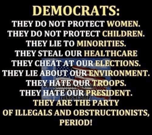 Children, Memes, and Party: DEMOCRATS:  THEY DO NOT PROTECT WOMEN.  THEY DO NOT PROTECT CHILDREN.  THEY LIE TO MINORITIES.  THEY STEAL OUR HEALTHCARE  THEY CHEAT AT OUR ELECTIONS  THEY LIE ABOUT OUR ENVIRONMENT.  THEY HATE OUR TROOPS.  THEY HATE OUR PRESIDENT.  THEY ARE THE PARTY  OF ILLEGALS AND OBSTRUCTIONISTS,  PERIOD!