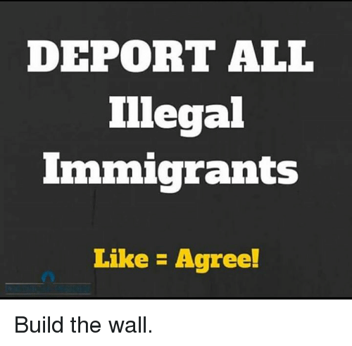 Memes, 🤖, and The Wall: DEPORT ALL  Illegal  Immigrants  Like Agree! Build the wall.