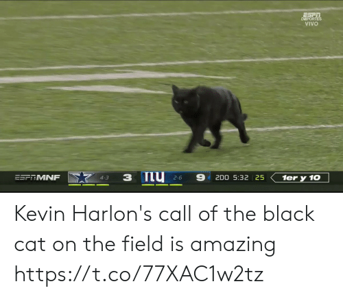 Is Amazing: DEPORTES  VIVO  ESFRMNF  2D0 5:32 25  1er y 10  4-3  2-6 Kevin Harlon's call of the black cat on the field is amazing https://t.co/77XAC1w2tz