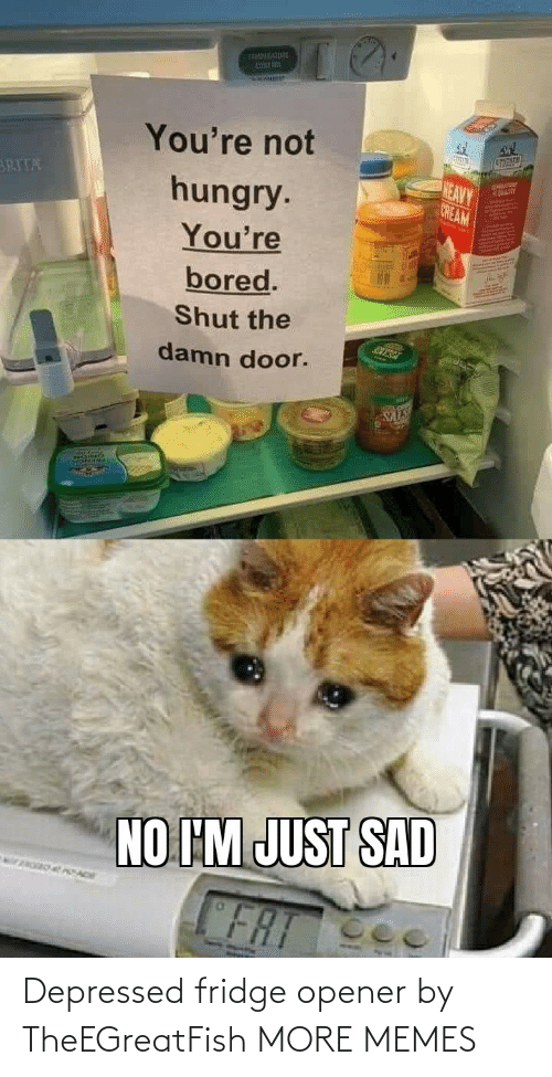 fridge: Depressed fridge opener by TheEGreatFish MORE MEMES