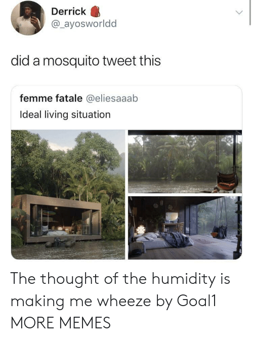 wheeze: Derrick  @_ayosworldd  did a mosquito tweet this  femme fatale @eliesaaab  Ideal living situation The thought of the humidity is making me wheeze by Goal1 MORE MEMES
