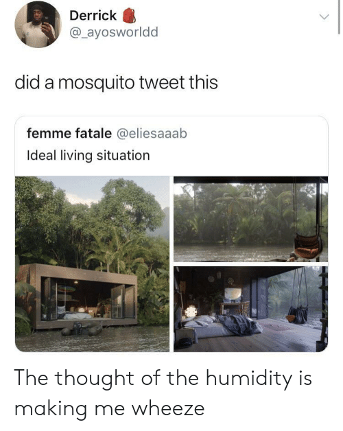 wheeze: Derrick  @ayosworldd  did a mosquito tweet this  femme fatale @eliesaaab  Ideal living situation The thought of the humidity is making me wheeze