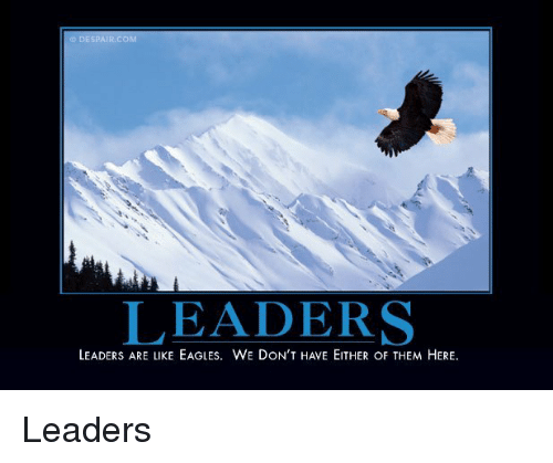 Philadelphia Eagles, Despair, and Com: DESPAIR.COM  LEADERS  LEADERS ARE LIKE EAGLES. WE DON'T HAVE EITHER OF THEM HERE Leaders