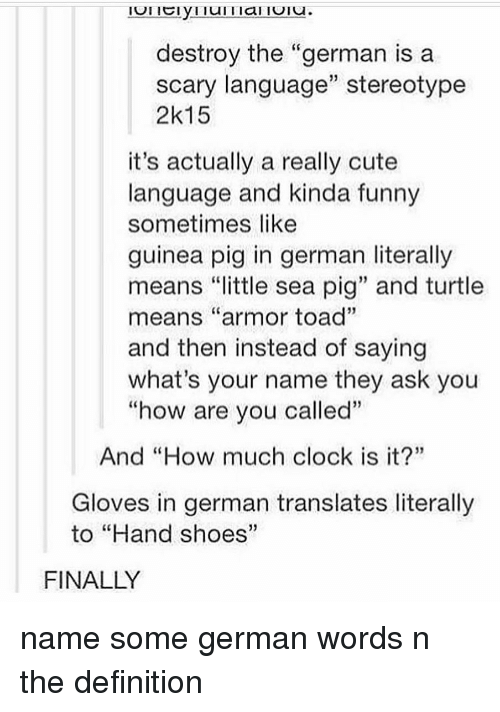 """what's your name: destroy the """"german is a  scary language"""" stereotype  2k15  it's actually a really cute  language and kinda funny  sometimes like  guinea pig in german literally  means """"little sea pig"""" and turtle  means """"armor toad""""  and then instead of saying  what's your name they ask you  """"how are vou called""""  And """"How much clock is it?""""  Gloves in german translates literally  to """"Hand shoes""""  FINALLY name some german words n the definition"""