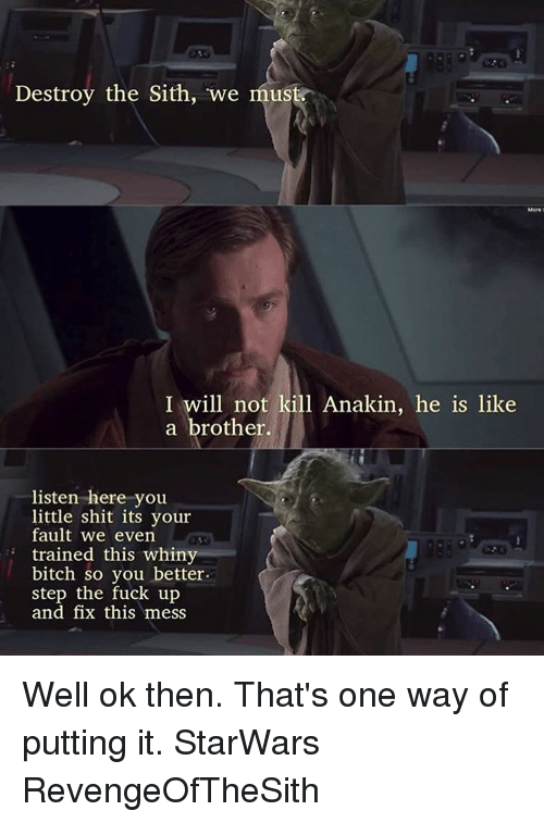 destroy the sith we must i will not kill anakin 13241731 🇲🇽 25 best memes about listen here you little shits listen