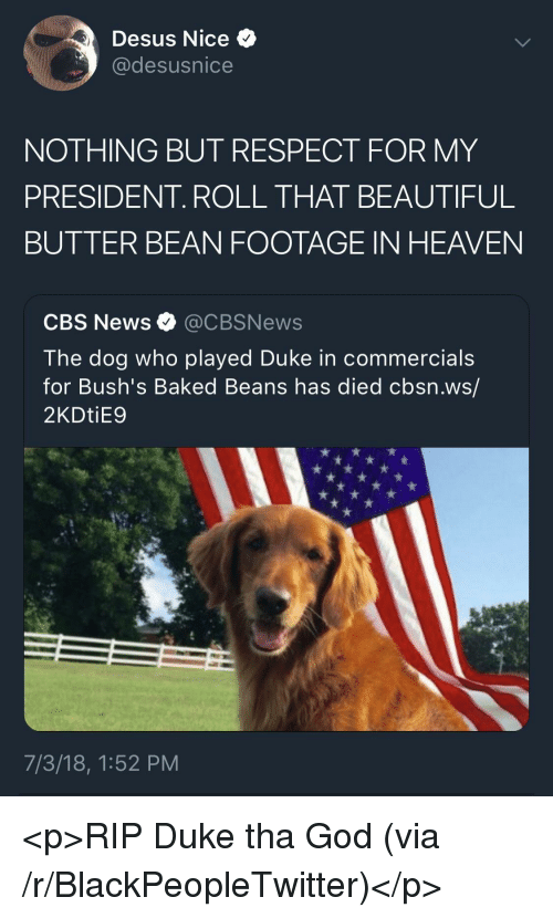 baked beans: Desus Nice  @desusnice  NOTHING BUT RESPECT FOR MY  PRESIDENT. ROLL THAT BEAUTIFUL  BUTTER BEAN FOOTAGE IN HEAVEN  CBS News @CBSNews  The dog who played Duke in commercials  for Bush's Baked Beans has died cbsn.ws/  2KDtiE9  7/3/18, 1:52 PM <p>RIP Duke tha God (via /r/BlackPeopleTwitter)</p>