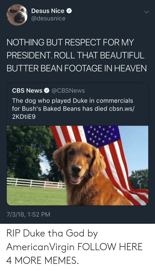 baked beans: Desus Nice  @desusnice  NOTHING BUT RESPECT FOR MY  PRESIDENT. ROLL THAT BEAUTIFUL  BUTTER BEAN FOOTAGE IN HEAVEN  CBS News @CBSNews  The dog who played Duke in commercials  for Bush's Baked Beans has died cbsn.ws/  2KDtiE9  7/3/18, 1:52 PM RIP Duke tha God by AmericanVirgin FOLLOW HERE 4 MORE MEMES.