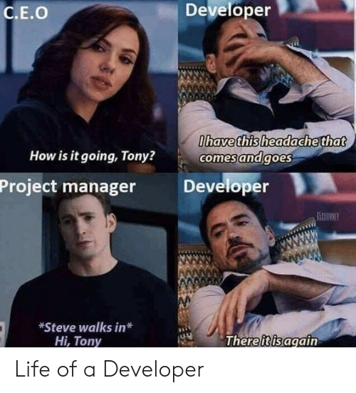 Life, How, and Project: Developer  C.E.O  havethisheadache that  How is it going, Tony?  comesandgoes  Project manager Developer  *Steve walks in*  Hi, Tony  Thereiisagain Life of a Developer