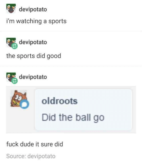 Dude, Sports, and Fuck: devipotato  i'm watching a sports  devipotato  the sports did good  devipotato  oldroots  Did the ball go  fuck dude it sure did  Source: devipotato