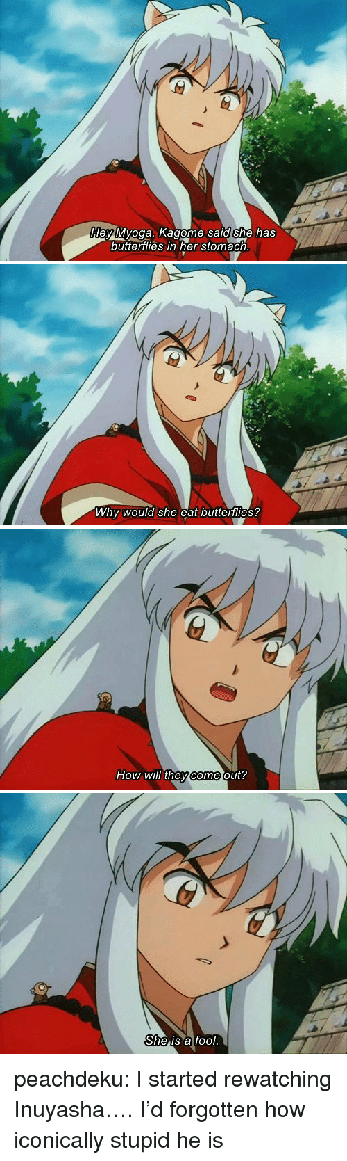 Tumblr, Blog, and InuYasha: dey Myoga, Kagome sald she has  buttertlies in her stomach   Why would she eat butterflies?   How will they come out?   She is a fool. peachdeku: I started rewatching Inuyasha…. I'd forgotten how iconically stupid he is