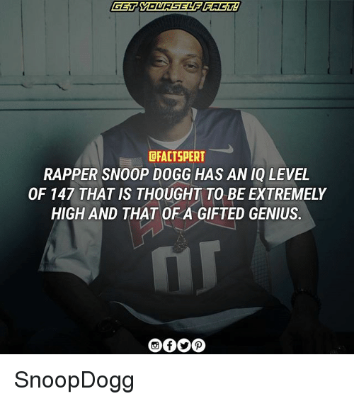Dogges: DFACTSPERT  RAPPER SNOOP DOGG HAS AN IQ LEVEL  OF 147 THAT IS THOUGHT TO BE EXTREMELY  HIGH AND THAT OF A GIFTED GENIUS. SnoopDogg