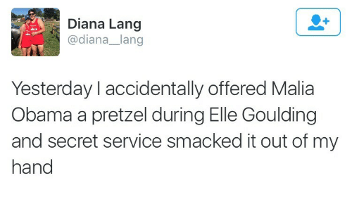 Malia Obama: Diana Lang  @diana_lang  Yesterday l accidentally offered Malia  Obama a pretzel during Elle Goulding  and secret service smacked it out of my  hand