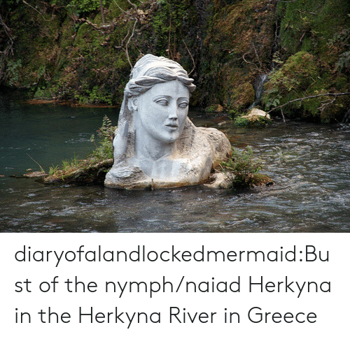 Tumblr, Blog, and Greece: diaryofalandlockedmermaid:Bust of the nymph/naiad Herkyna in the Herkyna River in Greece