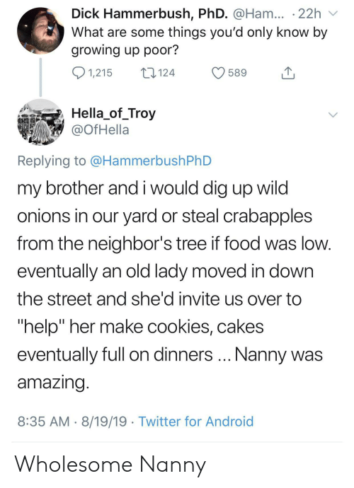 "Android, Cookies, and Food: Dick Hammerbush, PhD. @Ham... .22h  What are some things you'd only know by  growing up poor?  1,215  124  589  Hella_of_Troy  @OfHella  Replying to @HammerbushPhD  my brother and i would dig up wild  onions in our yard or steal crabapples  from the neighbor's tree if food was low.  eventually an old lady moved in down  the street and she'd invite us over to  ""help"" her make cookies, cakes  Nanny was  eventually full on dinners  amazing.  8:35 AM 8/19/19 Twitter for Android Wholesome Nanny"