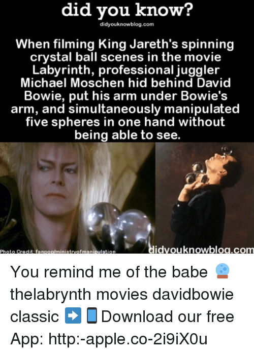 Apple, David Bowie, and Memes: did did know?  know?  When filming King Jareth's spinning  crystal ball scenes in the movie  Labyrinth, professional juggler  Michael Moschen hid behind David  Bowie, put his arm under Bowie's  arm, and simultaneously manipulated  five spheres in one hand without  being able to see.  idyouknowblog.com  Photo credit fanpop/ministryofmanipulation You remind me of the babe 🔮 thelabrynth movies davidbowie classic ➡📱Download our free App: http:-apple.co-2i9iX0u