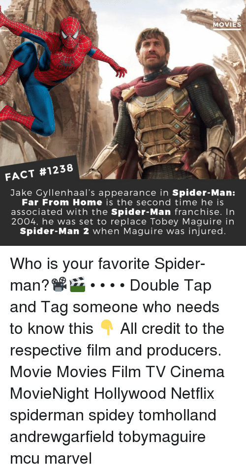 Maguire: DID YO  MOVIES  FACT #1238  Jake Cyllenhaal's appearance in Spider-Man:  Far From Home is the second time he is  associated with the Spider-Man franchise. In  2004, he was set to replace Tobey Maguire in  Spider-Man 2 when Maguire was injured Who is your favorite Spider-man?📽️🎬 • • • • Double Tap and Tag someone who needs to know this 👇 All credit to the respective film and producers. Movie Movies Film TV Cinema MovieNight Hollywood Netflix spiderman spidey tomholland andrewgarfield tobymaguire mcu marvel