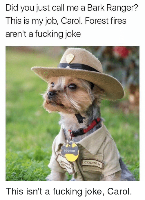 Carols: Did you just call me a Bark Ranger?  This is my job, Carol. Forest fires  aren't a fucking joke This isn't a fucking joke, Carol.