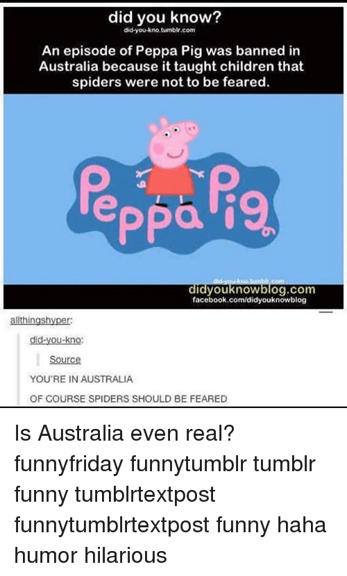 Children, Facebook, and Funny: did you know?  did you kno, tumblr.com  An episode of Peppa Pig was banned in  Australia because it taught children that  spiders were not to be feared.  Ppa  didyou know blog.com  facebook.com/didyouknowblog  ingsh  did-you-kno:  YOU'RE IN AUSTRALIA  OF COURSE SPIDERS SHOULD BE FEARED Is Australia even real? funnyfriday funnytumblr tumblr funny tumblrtextpost funnytumblrtextpost funny haha humor hilarious