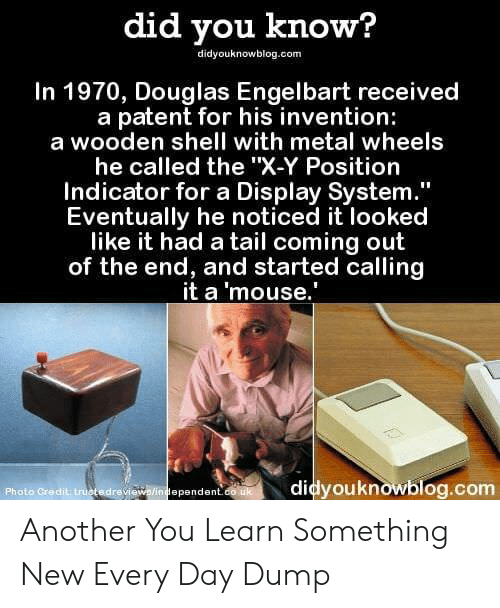 """Mouse, Metal, and Shell: did you know?  didyouknowblog.com  In 1970, Douglas Engelbart received  a patent for his invention:  a wooden shell with metal wheels  he called the """"X-Y Position  Indicator for a Display System  Eventually he noticed it looked  like it had a tail coming out  of the end, and started calling  it a 'mouse.  Photo Credit truotedrevi  didyouknowblog.com  ependent Another You Learn Something New Every Day Dump"""