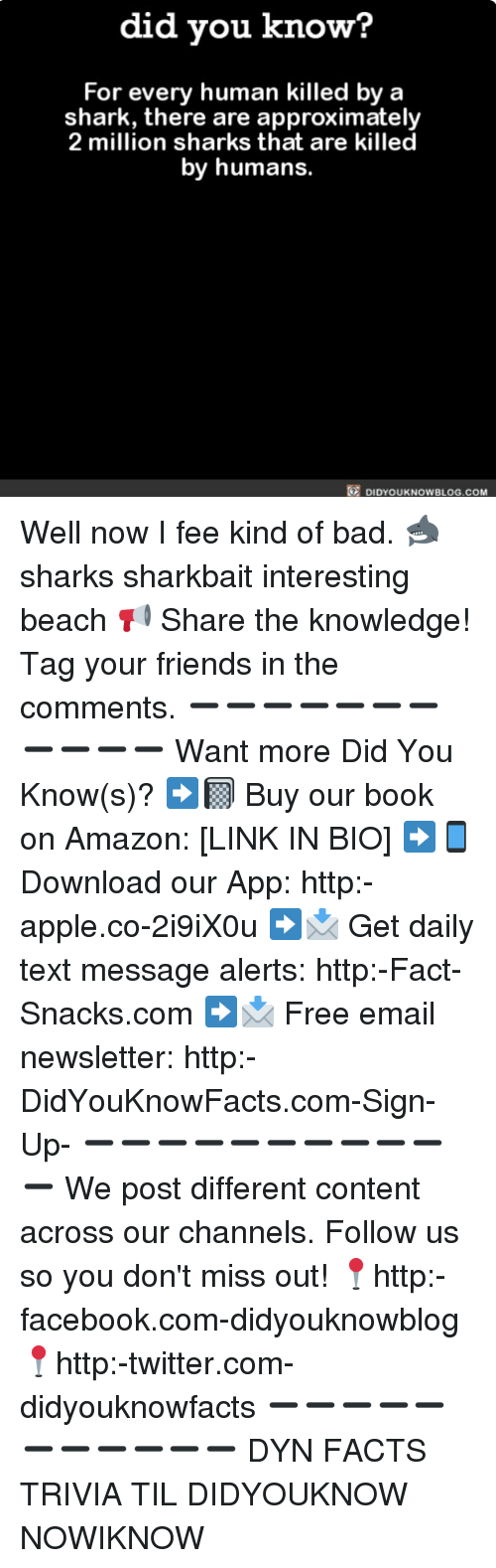 sharking: did you know?  For every human killed by a  shark, there are approximately  2 million sharks that are killed  by humans.  DIDYOUKNOWBLOG.COM Well now I fee kind of bad. 🦈 sharks sharkbait interesting beach 📢 Share the knowledge! Tag your friends in the comments. ➖➖➖➖➖➖➖➖➖➖➖ Want more Did You Know(s)? ➡📓 Buy our book on Amazon: [LINK IN BIO] ➡📱 Download our App: http:-apple.co-2i9iX0u ➡📩 Get daily text message alerts: http:-Fact-Snacks.com ➡📩 Free email newsletter: http:-DidYouKnowFacts.com-Sign-Up- ➖➖➖➖➖➖➖➖➖➖➖ We post different content across our channels. Follow us so you don't miss out! 📍http:-facebook.com-didyouknowblog 📍http:-twitter.com-didyouknowfacts ➖➖➖➖➖➖➖➖➖➖➖ DYN FACTS TRIVIA TIL DIDYOUKNOW NOWIKNOW