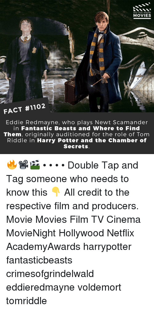 fantastic beasts: DID YOU KNOW  MOVIES  FACT #1102  Eddie Redmayne, who plays Newt Scamander  in Fantastic Beasts and Where to Find  Them, originally auditioned for the role of Tom  Riddle in Harry Potter and the Chamber of  Secrets 🔥📽️🎬 • • • • Double Tap and Tag someone who needs to know this 👇 All credit to the respective film and producers. Movie Movies Film TV Cinema MovieNight Hollywood Netflix AcademyAwards harrypotter fantasticbeasts crimesofgrindelwald eddieredmayne voldemort tomriddle